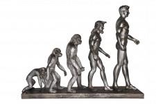 L'Evolution de l'Homme couleur argent