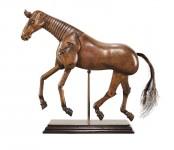 cheval d'Artiste - Artist Model