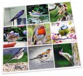 Dessous de plat en ceramique decor oiseaux des jardins